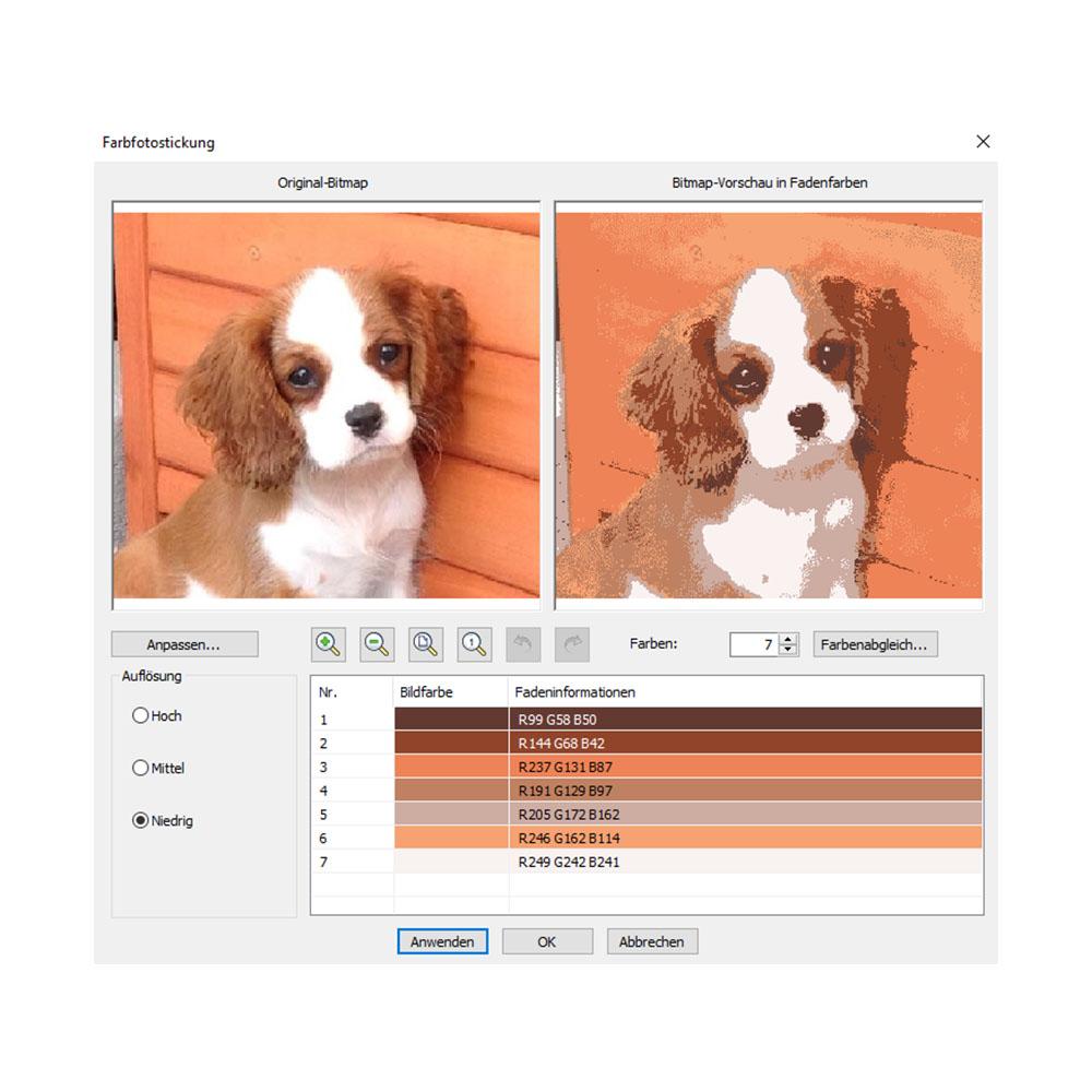 Fotos lassen sich in Farb- oder Graustufenstickerei umwandeln.
